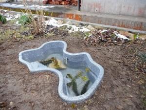 完成した池