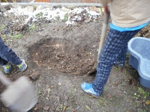穴掘り開始